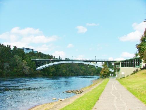 Ferrybank river (3)